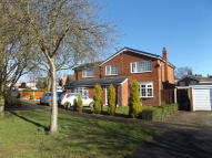 1 bedroom Studio flat to rent in Sycamore Close, Audlem