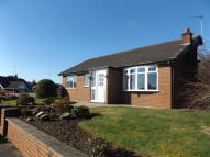 2 bedroom Detached Bungalow to rent in Hillary Drive, Audlem