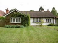3 bed Detached Bungalow to rent in COBHAM