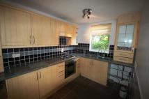 Terraced Bungalow to rent in Westwood, Windmill Hill...