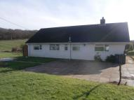 Detached Bungalow to rent in Forest Lane, Andover...