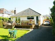 4 bedroom Detached Bungalow for sale in Oakdale, POOLE, Dorset