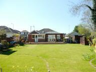 Detached Bungalow for sale in Oakdale, POOLE, Dorset