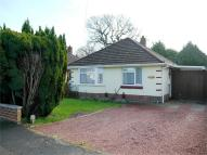 Detached Bungalow in Creekmoor, POOLE, Dorset