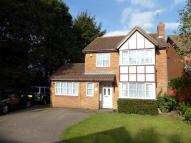 Detached property to rent in Dunstable