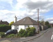 Bungalow for sale in Ypres Road, Allestree...