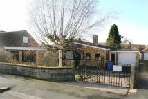 Detached Bungalow in Crabtree Close...