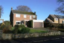 4 bedroom Detached house in Montpelier, Quarndon...