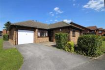 3 bed Detached Bungalow in Alstonfield Drive...