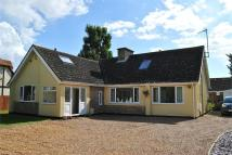 Detached Bungalow for sale in Green End Road, Sawtry...
