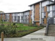 2 bed Apartment in Commonwealth Drive Three...