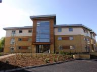 Apartment to rent in Percy Green Place...