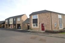 semi detached house to rent in Ruston Close, HUNTINGDON...
