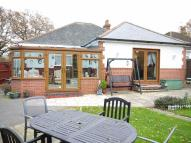 Detached Bungalow for sale in Wildern Lane, Hedge End...