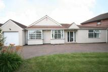 Detached Bungalow in Crosthwaite Way, Burnham