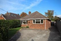 3 bedroom Detached Bungalow to rent in Highfield Drive, Ringwood