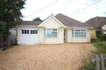Detached Bungalow for sale in Hampton Drive, Ringwood
