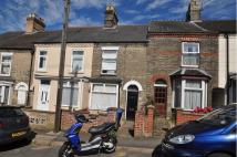 property to rent in Caernarvon Road, Norwich, NR2 3HX