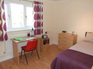 property to rent in Swafield Street, Norwich, NR5 9EB