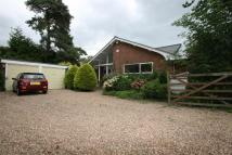 4 bed Bungalow for sale in St. Leonards Street...