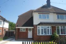 3 bed semi detached house to rent in Braintree