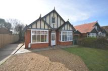 Detached Bungalow in Alverstone Road...