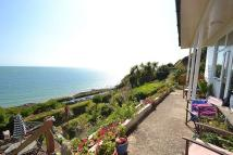 2 bedroom Flat in Ventnor , Ventnor