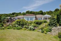 4 bedroom Bungalow in Bonchurch , Bonchurch
