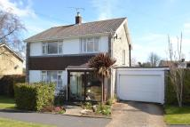 Detached house in Hollow Glade, Godshill