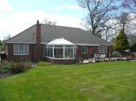 Detached Bungalow in Craythorne Road...