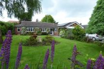 South Hill Detached Bungalow for sale