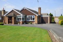 Detached Bungalow for sale in Bramshall Road, Uttoxeter