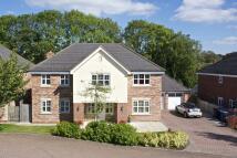 Frances Close Detached property for sale