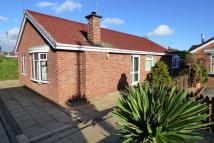 Detached Bungalow for sale in Pine Walk, Uttoxeter...