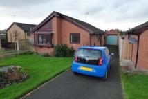 2 bed Detached Bungalow in Sandpiper Drive...