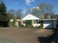 4 bedroom Detached Bungalow in Three Horseshoes Road...