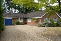 3 bedroom Detached Bungalow to rent in Headley Down