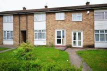 Willow Terraced property for sale