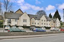 1 bedroom Flat in Maple Tree Court, Stroud...