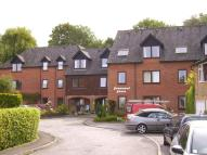 1 bedroom Apartment in Homemead House...
