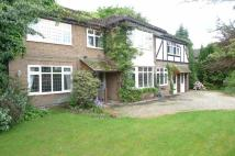 6 bedroom Detached home for sale in Harewood Avenue, Sale...
