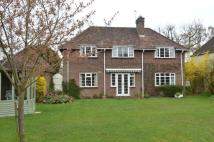 Detached property to rent in Crossways, Berkhamsted
