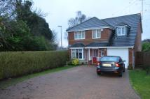 5 bedroom Detached house to rent in Halton, Wendover...