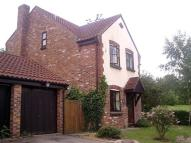 Detached property in Duston Wildes...
