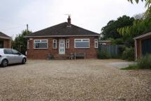 3 bedroom Detached Bungalow for sale in 10 Park Hill, Dersingham