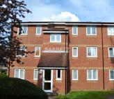 Studio apartment in Sandon Close, Rochford...