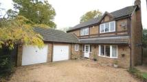 Detached home for sale in Anthony Wall, Warfield...