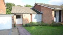 Bungalow for sale in Knightswood, Bracknell...
