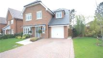 Detached home for sale in Elen Place, Bracknell...