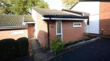 1 bed Bungalow for sale in Finmere, Bracknell...